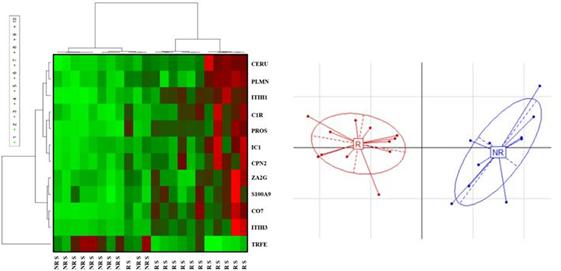 Combinaison de biomarqueurs discriminant des traitements utilisés dans la polyarthrite rhumatoïde.